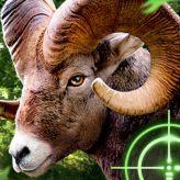 Ludi lov na koze